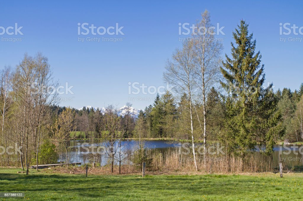 Buchner pond - little lake near Bad Toelz stock photo