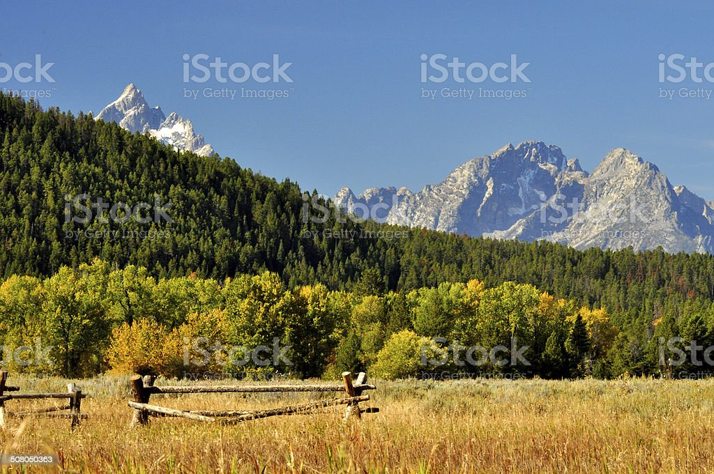 Buck and Rail Fence and snow capped mountains. royalty-free stock photo