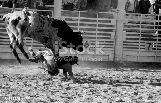 Cowboy falls to the ground and scrambles to get away from the angry bull.  Some motion blur.  Focus is on the bull.
