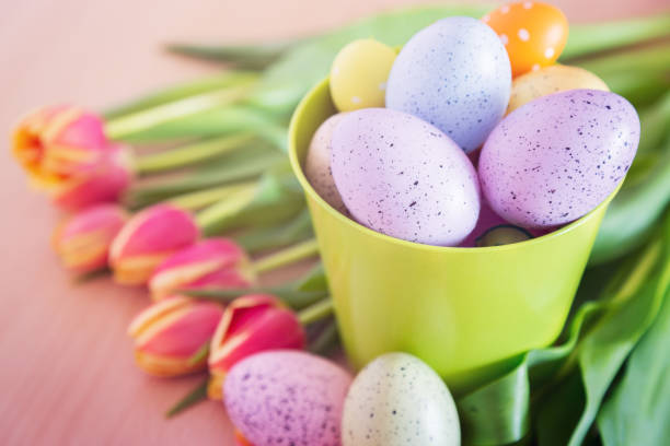 Bucket full of easter eggs with colorful tulips lying around stock photo