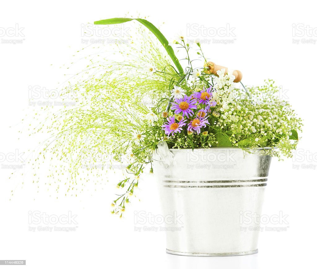 Bucket of fresh spring wild flowers royalty-free stock photo