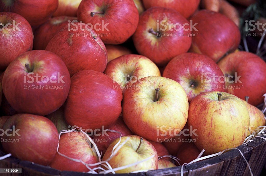 Bucket of red apples, ripe and delicious  - Close-up stock photo