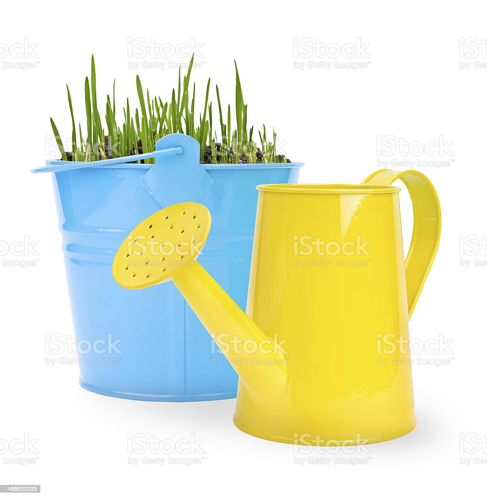 bucket with grass stock photo