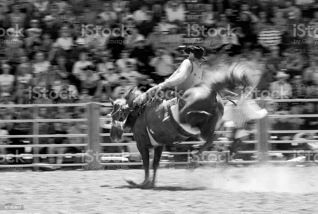 Buckin Bronco royalty-free stock photo