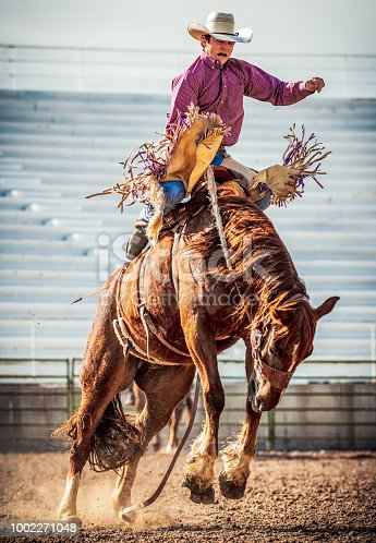 A young man struggling to stay on a bucking bronco horse at a rodeo event.