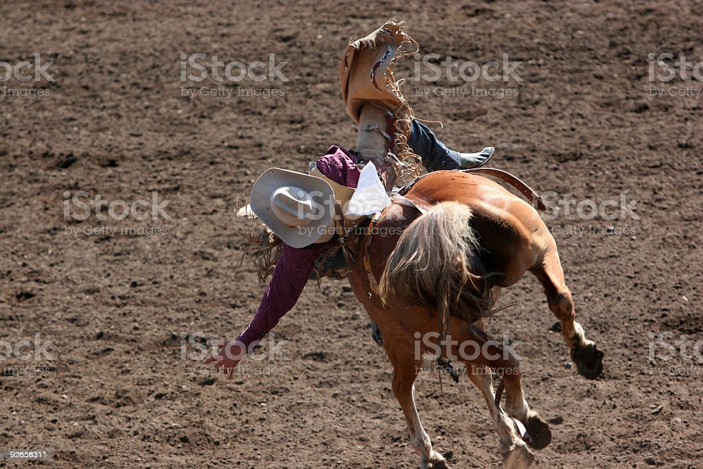 Bucking Bronco and a Brave Cowboy stock photo