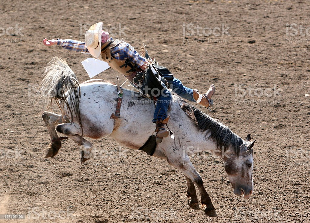 Bucking Bronco at the rodeo in neutral colors stock photo