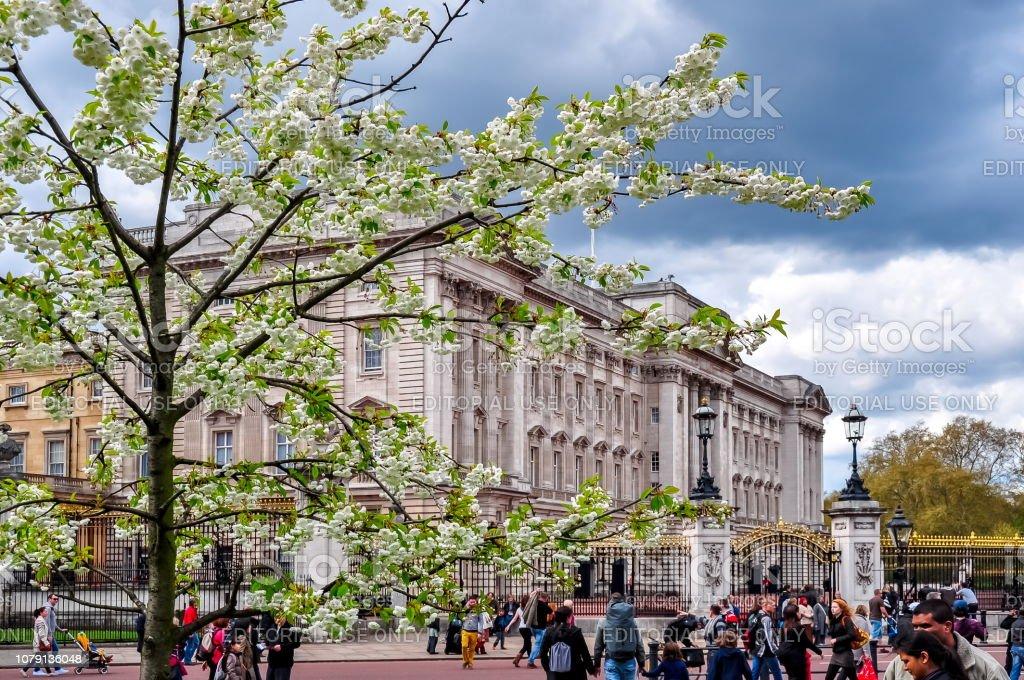 Buckingham palace in spring, London, UK stock photo