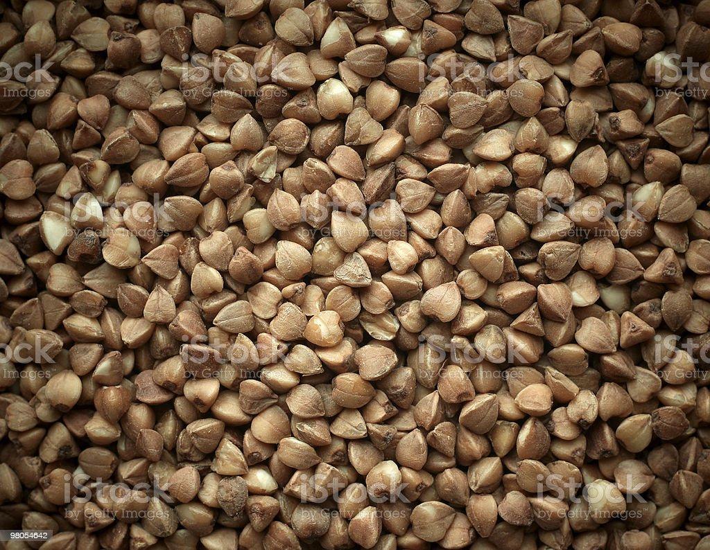 Buckwheat texture background closeup. royalty-free stock photo