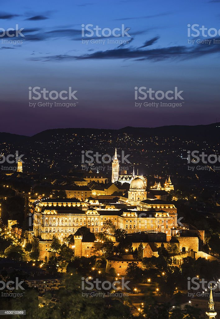 Buda Castle, Budapest,  Hungary royalty-free stock photo