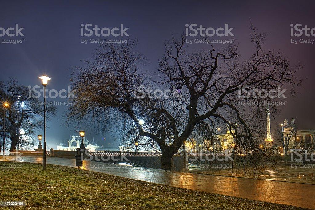 Budapest tree stock photo