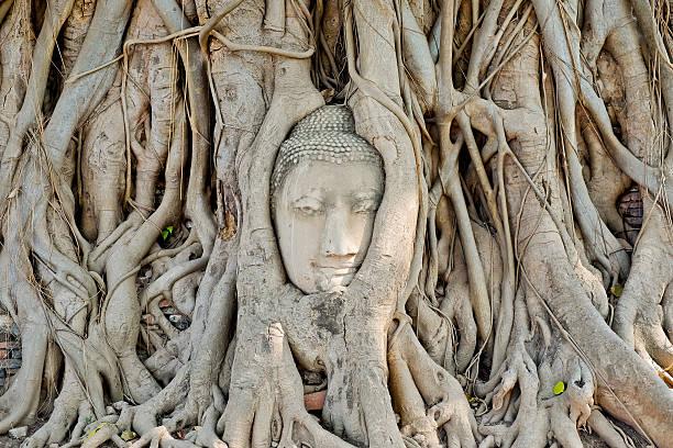 Buddha ancient stock photo