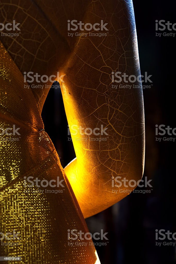 Buddha Arm royalty-free stock photo