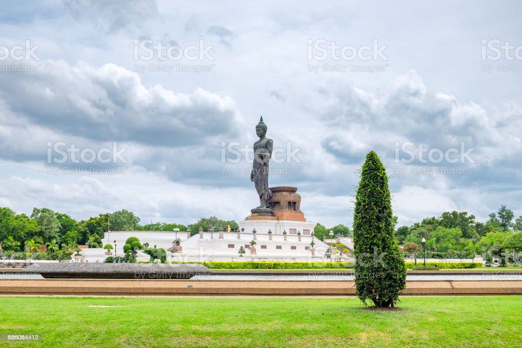 Buddha black statue standing in green decoration garden stock photo