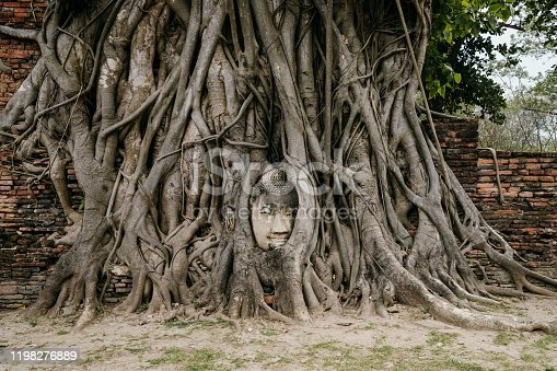 Buddha Face in the root of a tree - Ayutthaya, Thailand