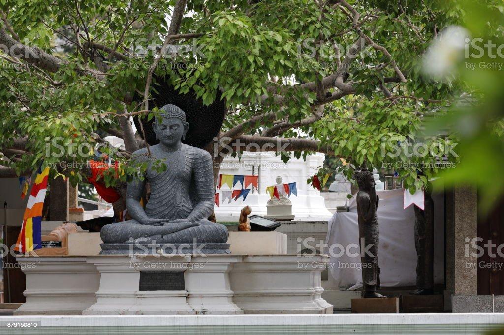 Buddha Figuren Im Seema Malaka Tempel Von Colombo Stock Photo & More