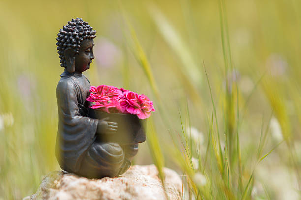 buddha-Figur schon in Blüte Wiese – Foto
