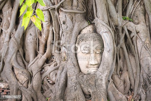 Famous head of Buddha looking out of the interlacing of tree roots at Wat Mahathat, Ayutthaya City - UNESCO World Heritage site. This head is one of the symbols of Thailand and its ancient culture.