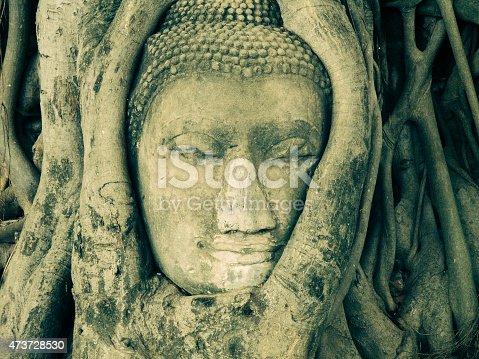 Ayuthaya, Thailand, Tree, Buddha, Root