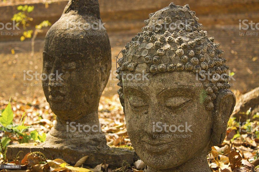 Buddha head In Wat Umong Chiangmai stock photo