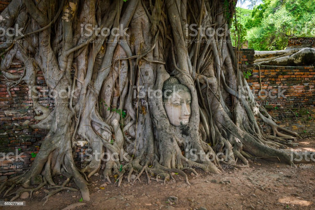 Buddha Head Tree Wat Maha That (Ayutthaya) - foto de stock
