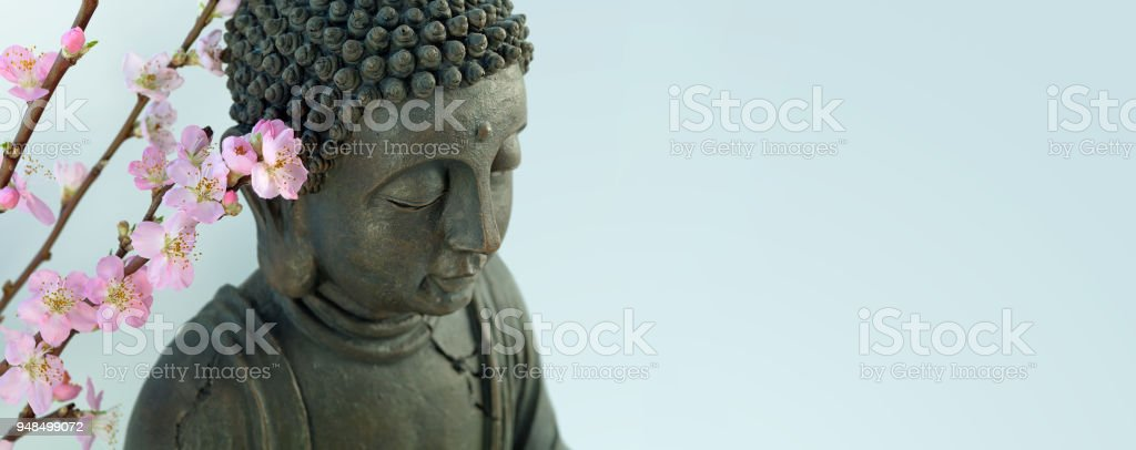Buddha head with blossom cherry branches stock photo