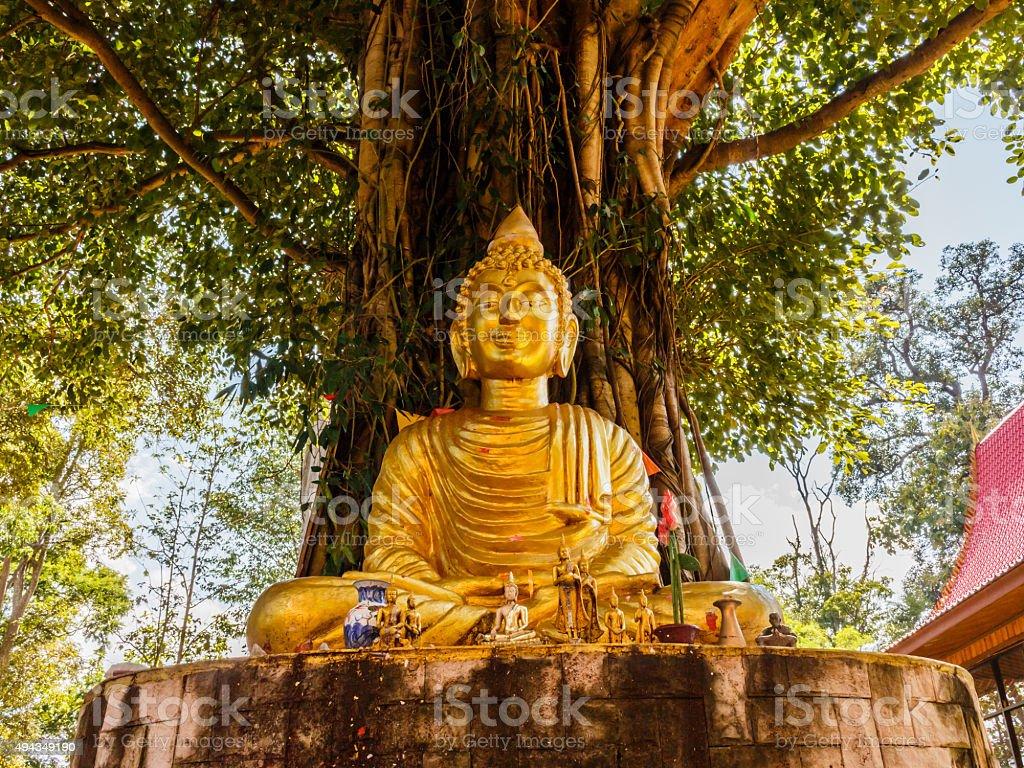 Buddha image under Bodhi tree stock photo