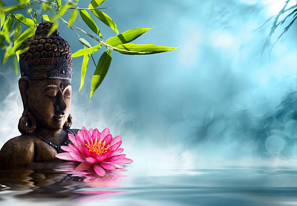 buddha in meditation - buddha stock-fotos und bilder