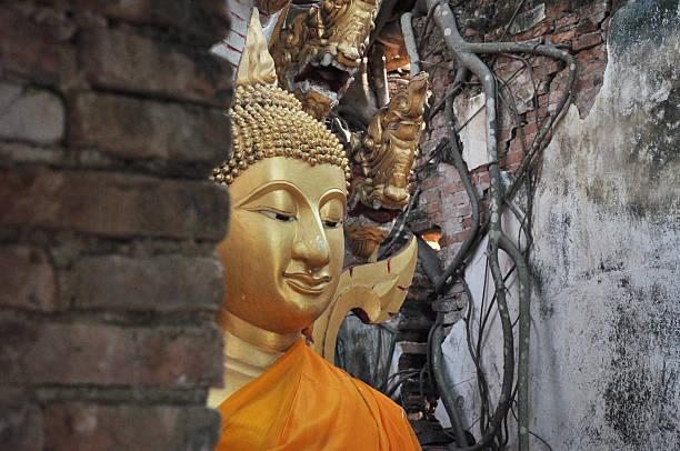 buddha - disaster design stock-fotos und bilder