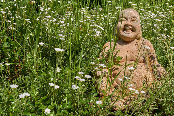 1 746 Laughing Buddha Stock Photos Pictures Royalty Free Images Istock