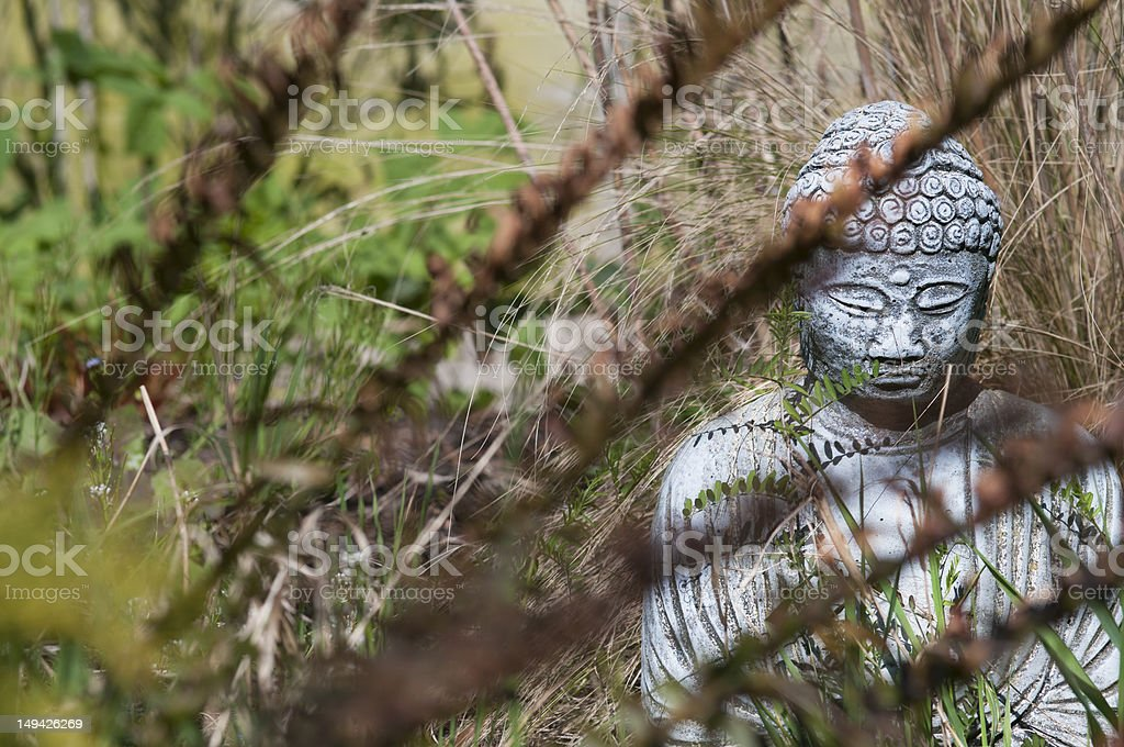 buddha statue in hidden garden stock photo
