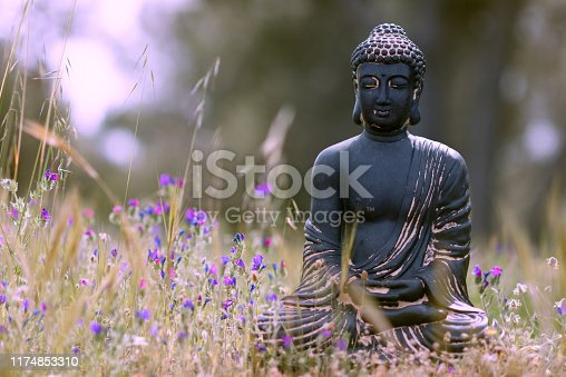 Buddha statue in the grass - meditation pose - cross processed