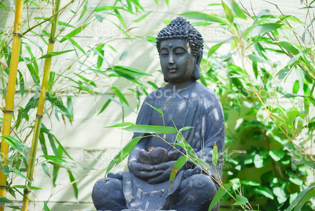 Buddha statue install a middle of bamboo plant. stock photo