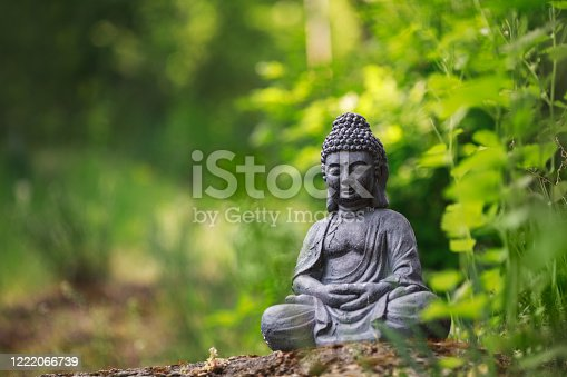 Buddha statue outside on nature and green background
