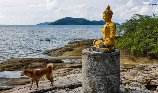 Buddha statue picture id1081776970?b=1&k=6&m=1081776970&s=612x612&w=0&h=rkejthx7ya1izxltrdb270uc6rypglstqmq3jm4wzeu=