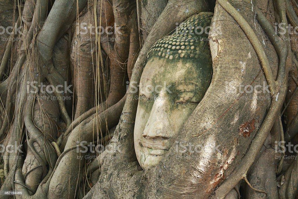 Estatua de buda - foto de stock