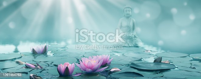 buddha statue surrounded by water lilies in sunshine, tranquility in nature, wellness concept