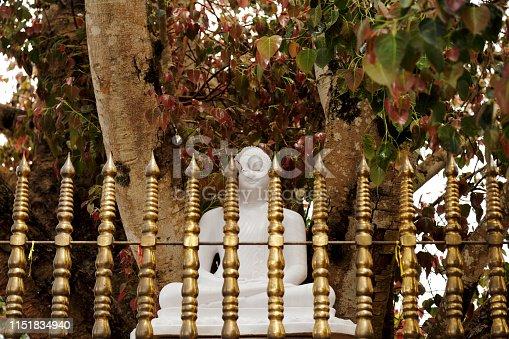 Buddha statue under the bodhi tree in the compound of Bahiravokanda temple in Kandy, Sri Lanka.