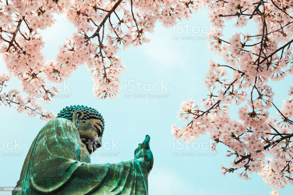 Buddha statue with cherry blossom in Po Lin Monastery, Hong Kong stock photo