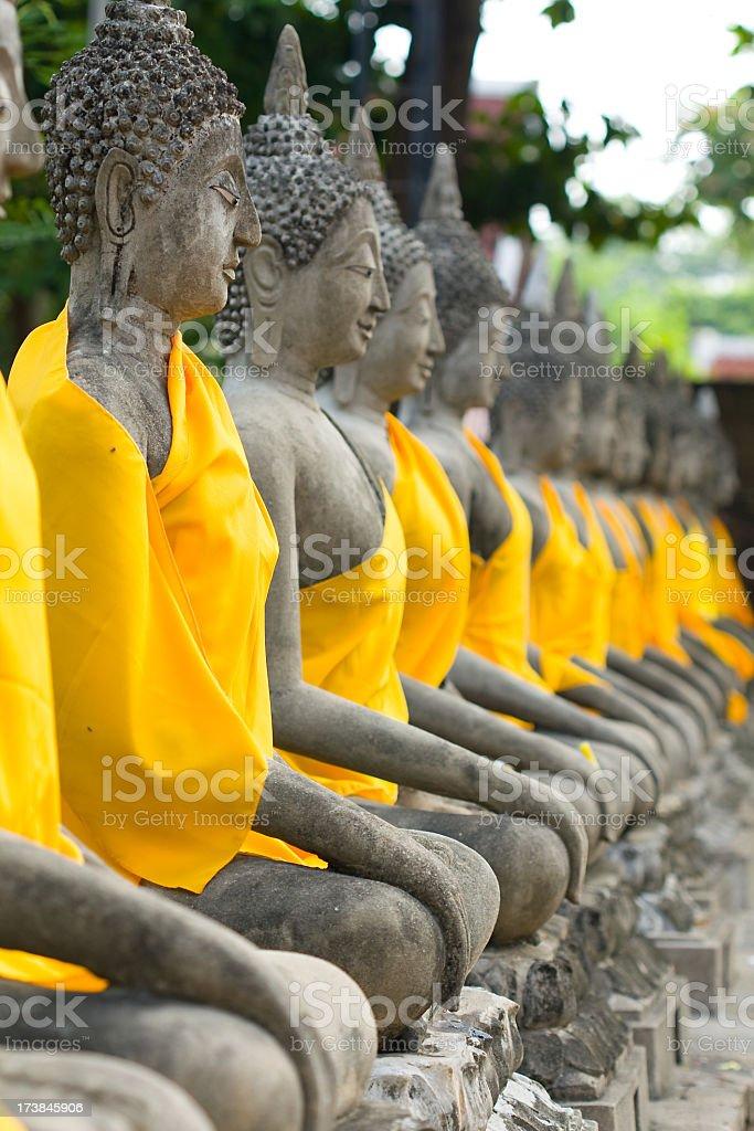 Buddha Statues, Ayutthaya royalty-free stock photo