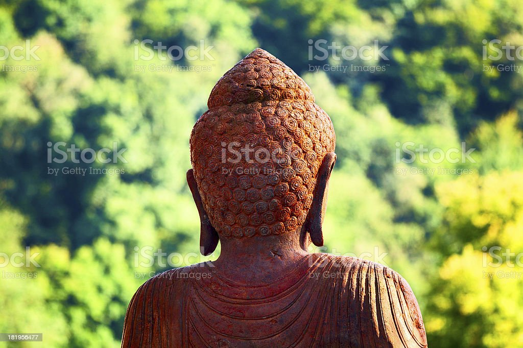 Buddha watching in forest royalty-free stock photo