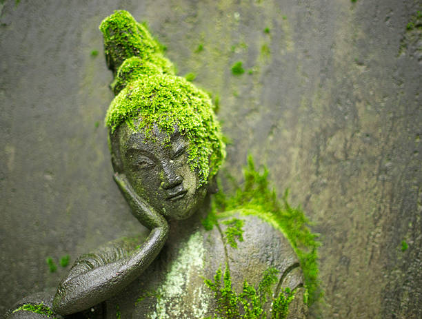 Buddhist Meditation Statue Covered with Moss