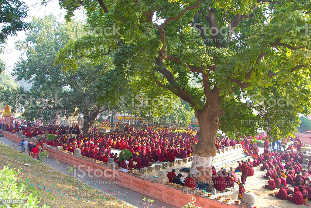 Buddhist monks sitting under the bodhi tree at Mahabodhi temple stock photo