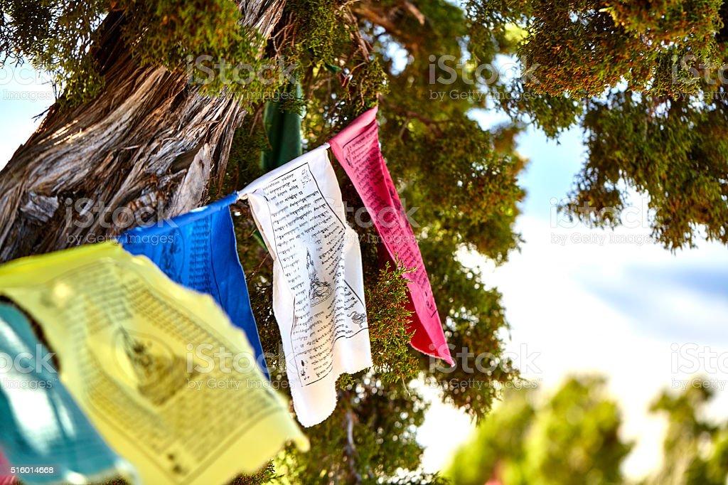 Buddhist Prayer Flags On Mountain Juniper Tree Stock Photo More