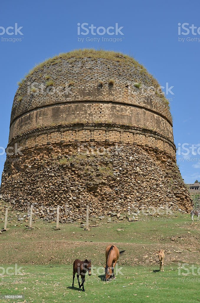 Buddhist stupa in Pakistan with horse and mules royalty-free stock photo