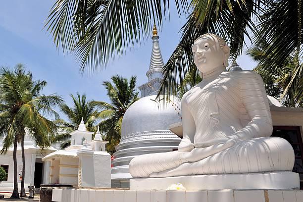 Buddhist Stupa under palm trees, Sri Lanka stock photo