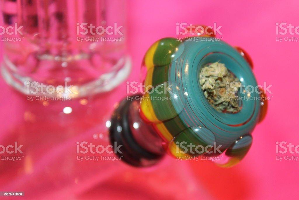 Budding Colors stock photo