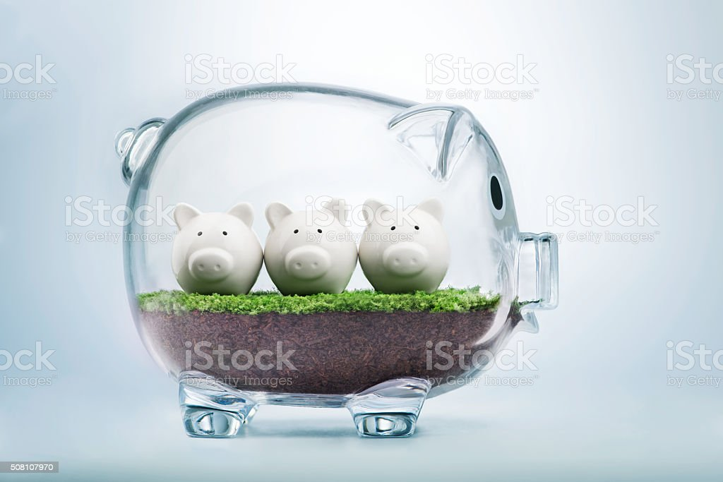 Budget planning and allocating money concept stock photo