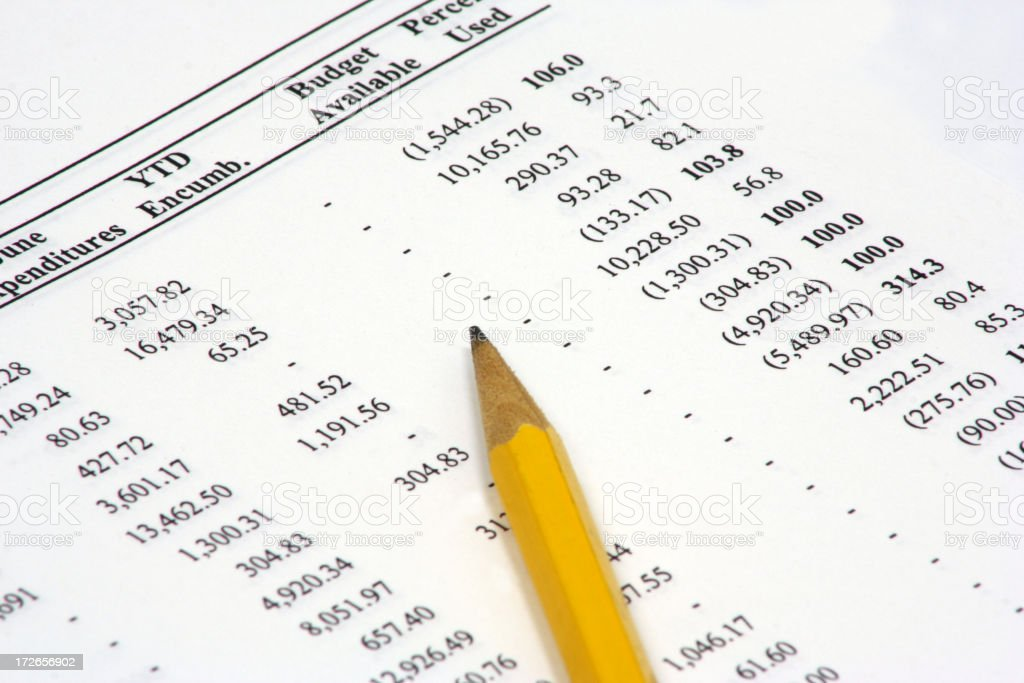 Budget Spreadsheet royalty-free stock photo