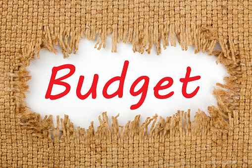 465048456 istock photo Budget text concept 1082837342